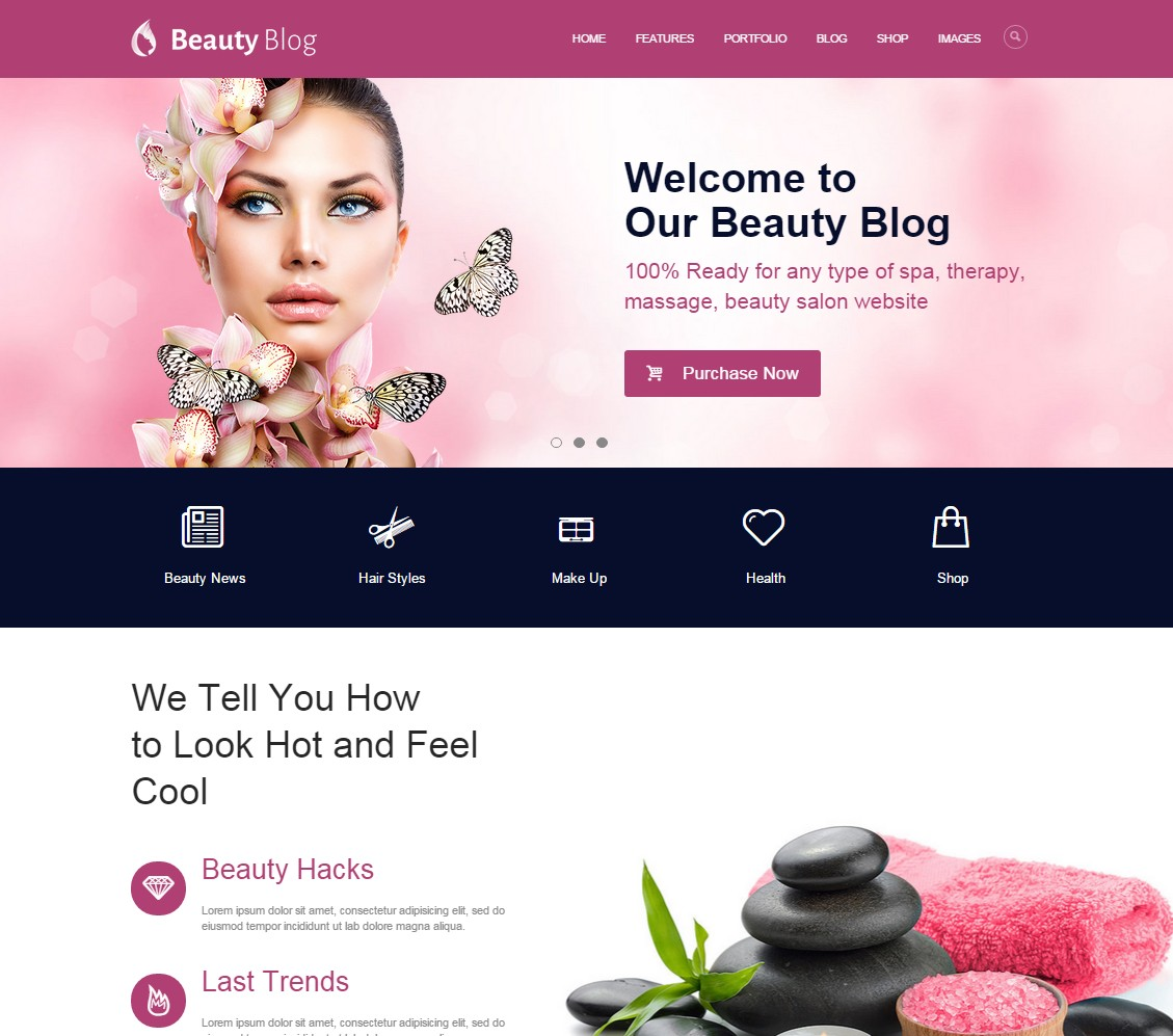 themes wordpress cosmétique beauty blog
