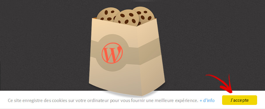 alerte cookie message wordpress sans plugin
