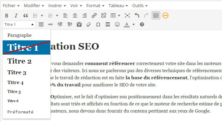 balise h1 titre article wordpress