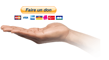 faire un don plugin paypal