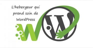 meilleur hebergeur wordpress wpserveur