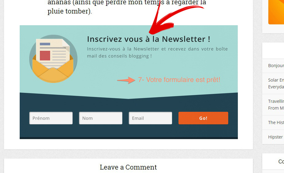 newletter mailing list wordpress louer