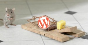 protéger wordpress astuce conseil piratage sécuriser