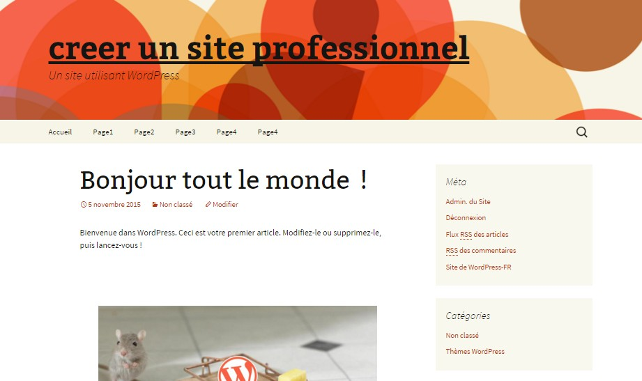 personnalisation theme wordpress twentyThirteen