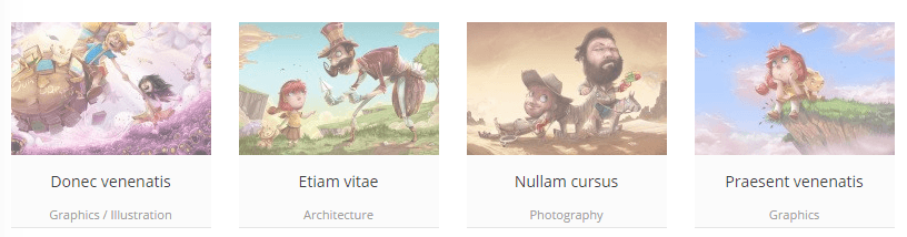 portfolio theme zwin