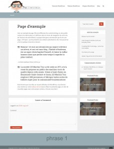 personnaliser design theme wordpress the voice