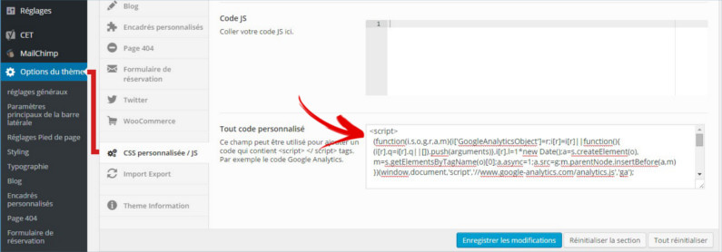 coller code analytics option theme wordpress